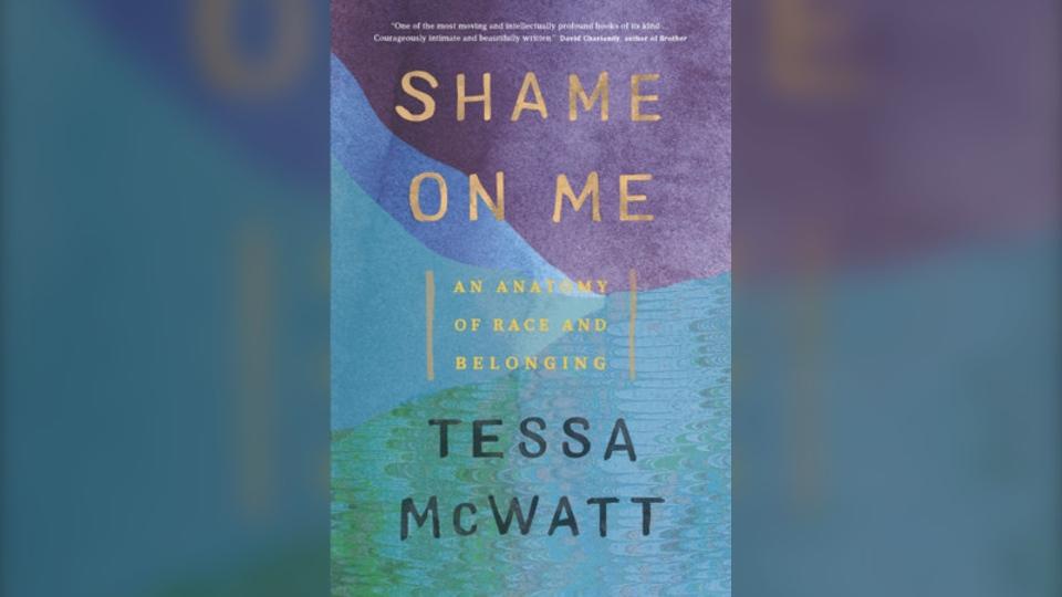 'Shame on Me' book