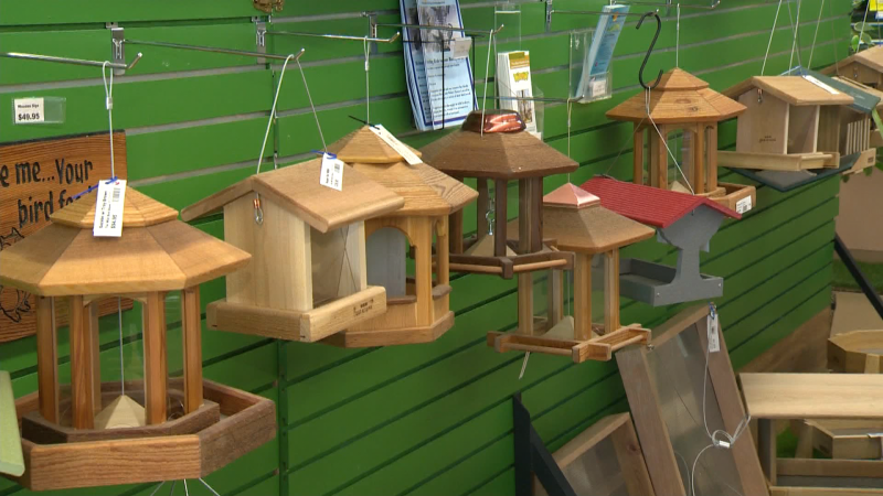Just in time for Father's Day, The Wild Bird Store offers fresh bird seed, locally made accessories, and expert advice for bird lovers.