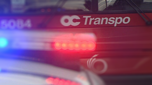 File Photo: OC Transpo bus and police vehicle lights