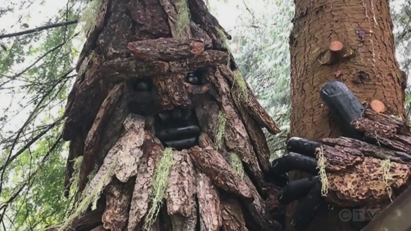 """""""I think he's a wonderful, mystical creature!"""" Adam goes searching for Sasquatch and finds a bounty of Bigfoot around East Sooke."""