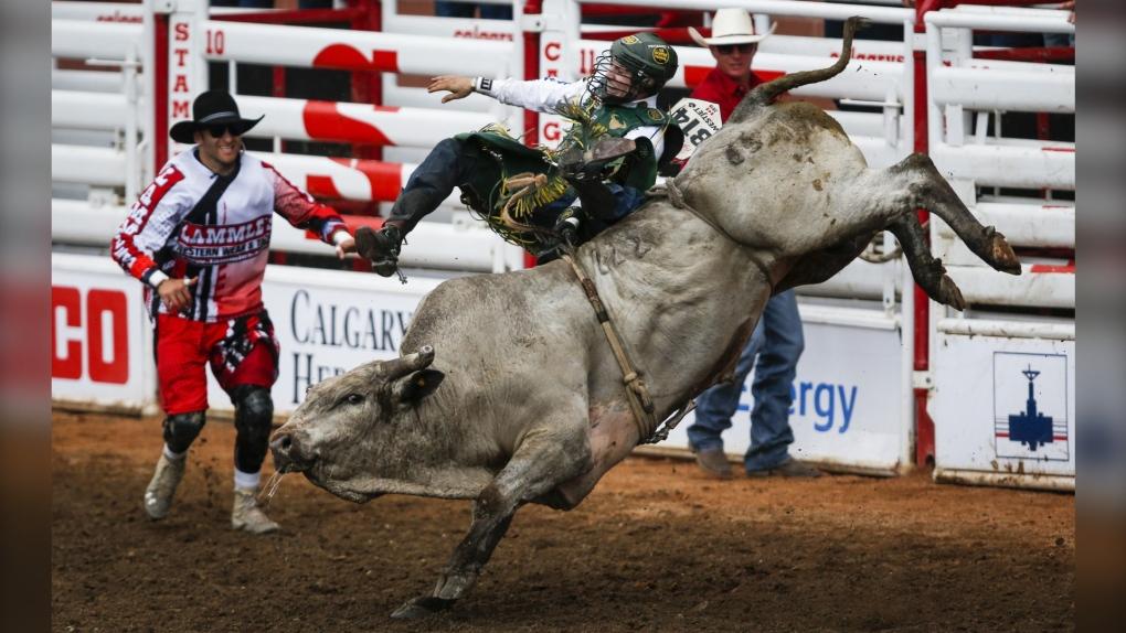 Calgary Stampede, bull, bull rider,