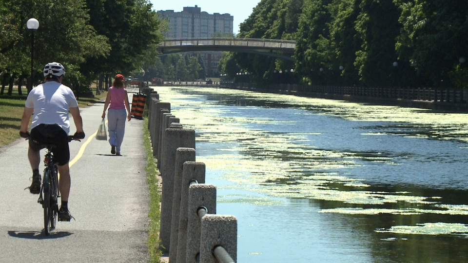 Parks Canada says a weed harvester will be deployed next week to remove weeds from the Rideau Canal.