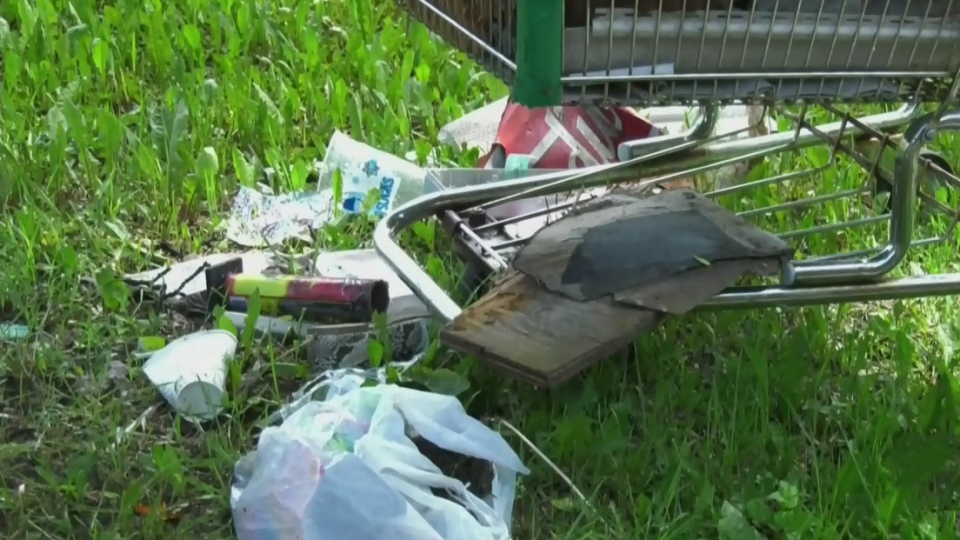 Alfred Avenue residents dealing with excess trash