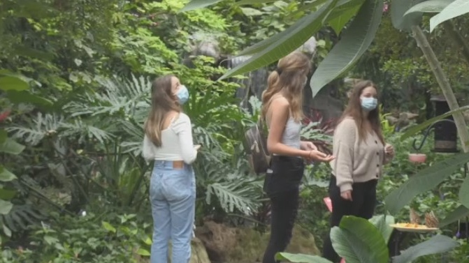 Visitors at Cambridge Butterfly Conservatory