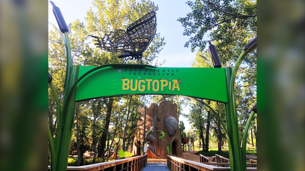 New Play Space Set To Open At The Calgary Zoo Ctv News