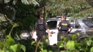 OPP respond to a reported stabbing in Union, Ont. on Thursday, June 25, 2020. (Celine Zadorsky / CTV News)