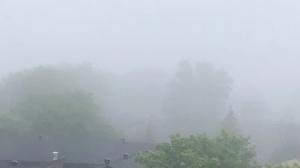 A foggy morning in Ottawa. (Ted Raymond / CTV News Ottawa)