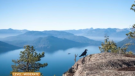 HIkes for beginners, hikes for Canada Day, hike BC