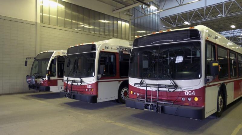 Red Deer Transit buses. (Nav Sangha/CTV News)