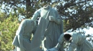 Recently, half of the statues at Grotto of Our Lady of Lourdes were beheaded by vandals. (Molly Frommer/CTV News)
