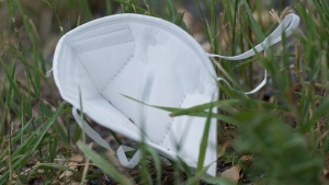 A discarded face mask is shown in a park in Montreal, Saturday, June 27, 2020, as the COVID-19 pandemic continues in Canada and around the world. THE CANADIAN PRESS/Graham Hughes