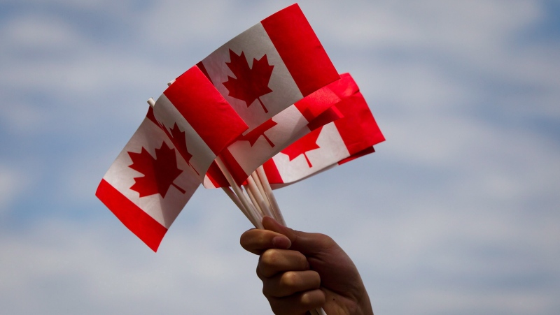 A volunteer waves Canadian flags while handing them out to people during Canada Day festivities on Monday, July 1, 2013.  THE CANADIAN PRESS/Darryl Dyck