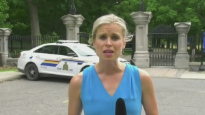 RCMP arrest armed man at Rideau Hall