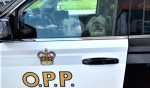 An Ontario Provincial Police officer filling his vehicle at a Lively gas station Thursday made an unexpected capture of two Shih Tzus on the lam from a nearby shelter. (Supplied)