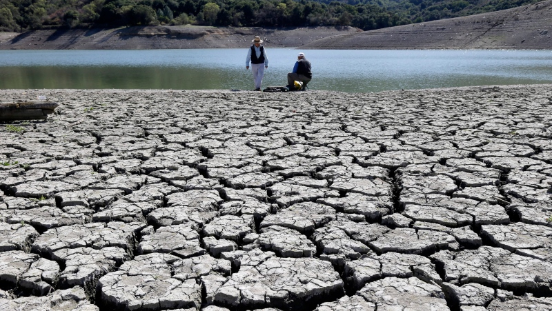 This March 13, 2014 photo shows cracks in the dry bed of the Stevens Creek Reservoir in Cupertino, Calif. (AP / Marcio Jose Sanchez)
