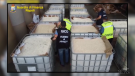 Drugs seized in Italy