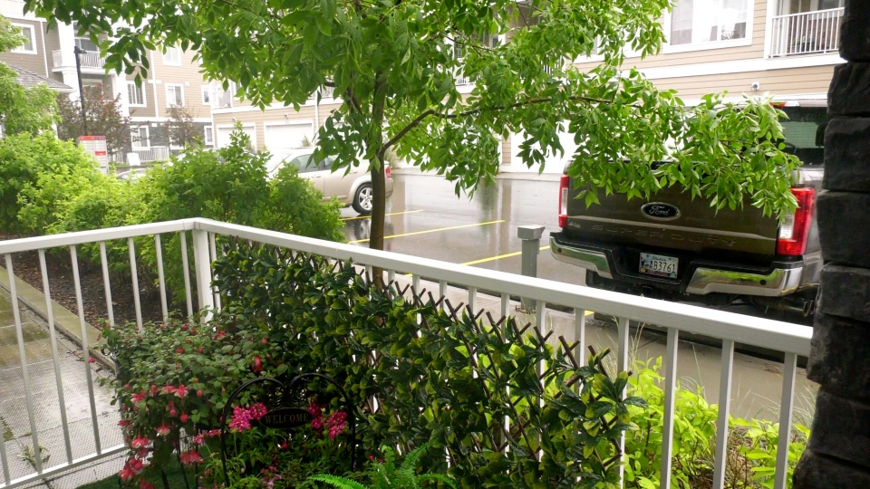 Amanda O'Reilly added a leafy lattice to her mom, Brenda's patio but the condo board at Cranston Ridge said it's not allowed and will result in a fine.