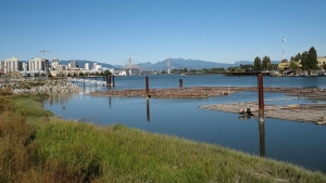 The City of New Westminster says the boardwalk along the Fraser River will remain closed starting Friday and will remain out of commission until water levels recede. (City of New Westminster)