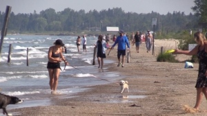 Beach-goers enjoying the sand in Sauble Beach, Ont. on Friday, July 3, 2020. (Scott Miller / CTV News)