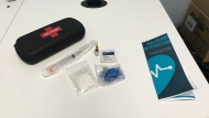 A Naloxone kit is seen in this file image. (Cally Stephanow/CTV News)