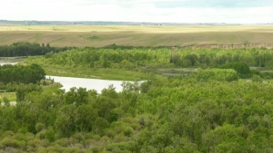 The chief of the Siksika First Nation says a curfew has been put in place to control the spread of COVID-19. There are 10 active cases of the illness connected to the reserve and more than 300 case investigations.