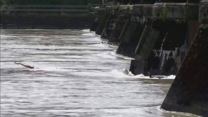 Evacuation alerts issued along Fraser River