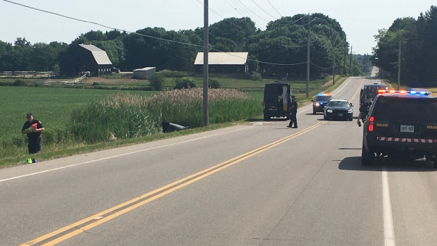 A Medway Road crash investigation is underway north of London, Ont. on Sunday, July 5, 2020. (Brent Lale/CTV London)