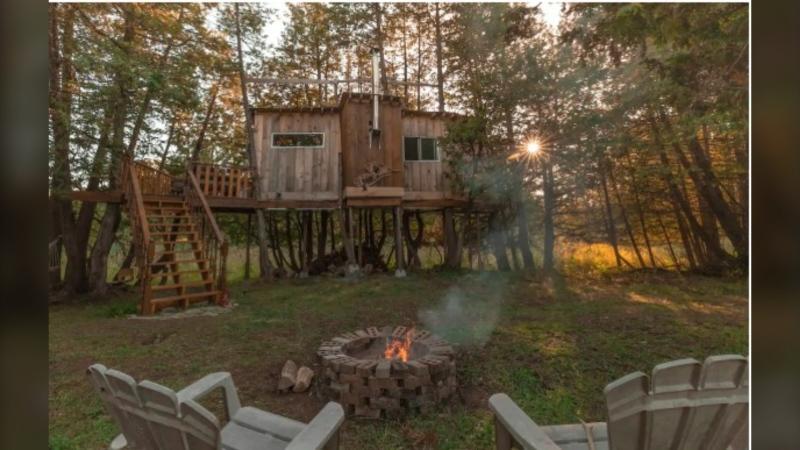 The Isolation Tree House Cabin (Photo courtesy: Airbnb.ca Arthur)
