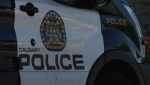 Calgary police are investigating after a shooting occurred in a southeast neighbourhood early Saturday. (File)