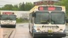 Halifax Transit shuts down bus terminal
