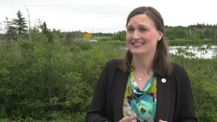 """There are many people in our communities in rural areas who don't have a vehicle or the cost of travel is prohibitive, especially with the new rules that have been brought in around the border,"" said Memramcook-Tantramar MLA Megan Mitton. ""That has increased the need in Sackville."""