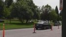 Multiple assaults at Queen Elizabeth Park