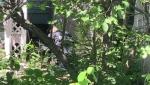 Saskatoon Police Service July 7