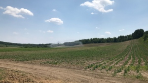 An irrigation system working in a field in southern Ontario is shown on July 7, 2020 (Leighanne Evans / CTV News Kitchener)
