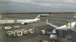 Possible COVID exposure on Toronto-Halifax flight