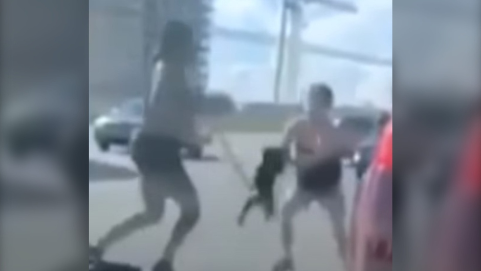 Halifax Regional Police say this video shows a dog being swung on its leash by a woman who is not the dog's owner. (YouTube)