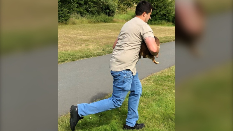 Saanich Police are searching for this man in connection to an alleged assault at Brydon Park: (Saanich Police)
