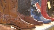 Stampede-related businesses search for business