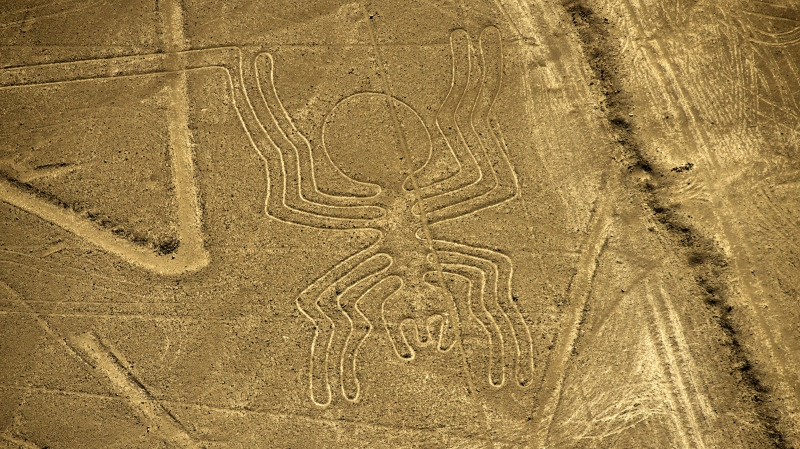 An aerial view of the Spider geoglyph, part of the mysterious Nazca Lines in Peru. (MARTIN BERNETTI/AFP/AFP/Getty Images)