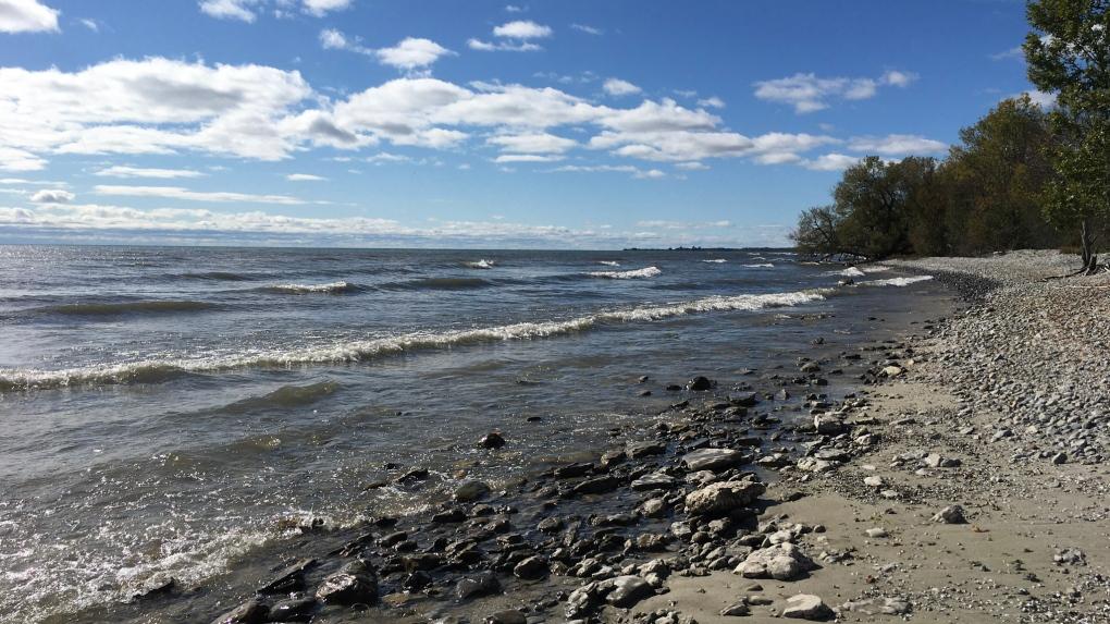 MapleCross Shoreline Reserve