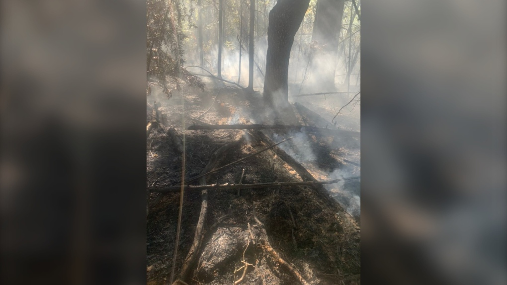 Sudbury area forest fire contained