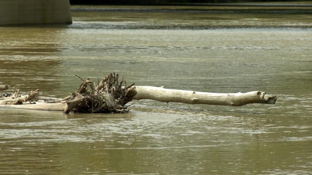 Debris on river