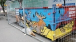 A mural on a dumpster is helping raise money and awareness for the Regina organization the Street Culture Project. (Donovan Maess/CTV News)