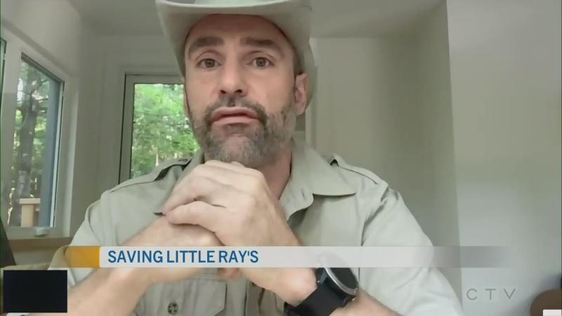 CTV Morning Live Goulet July 10