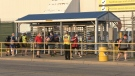 Employees leave the FCA Windsor Auto Plan as the third shift ended at 7:06 a.m. in Windsor, Ont. on Friday, July 10 2020. (Bob Bellacicco/CTV Windsor)