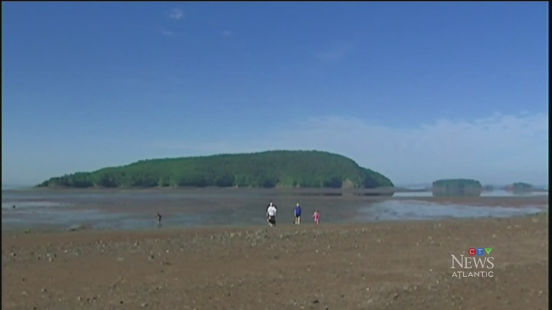 Geological sites in N.S., N.L earn special status