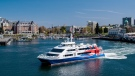 The Victoria Clipper is not restarting sailings between Victoria and Seattle until 2021: (Victoria Clipper)