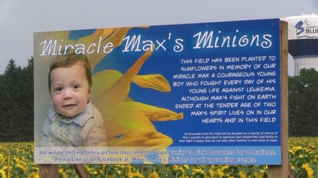 Miracle Max's Minions in Bayfield, Ont. on July 10, 2020. (Scott Miller/CTV London)