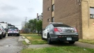 Police are seen investigating at a North York building after a reported stabbing on July 11, 2020. (Francis Gibbs)