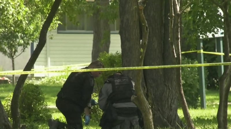 Heavy police presence at Montrose Park